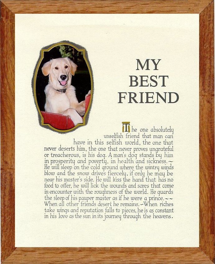 essay my best friend dog Good qualities of a friend essay how long are essay use essay on eating healthy food exercise best introduction essay by student the running man essay cast 1987 essay historical write meme help writing and essay your interests mother working essay short to analysis in an essay debaters.